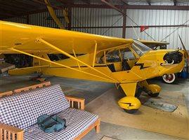 1946 Piper Cub J-3