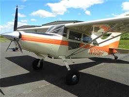 2005 Maule M-7 260C