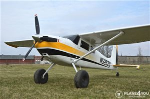 1958 Cessna 180 PERFECT